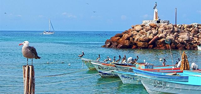 Playa El Anclote Es De Las Más Bonitas De Riviera Nayarit Gente Nayarit